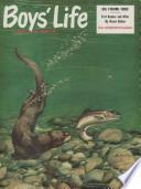 1961年4月