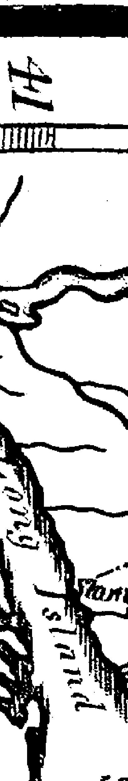 [subsumed][ocr errors]