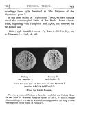 143 ページ