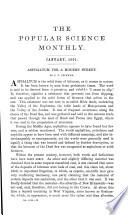 1901年1月