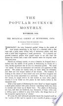 1905年11月