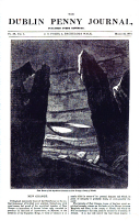 305 ページ