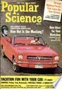 1964年5月
