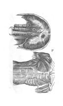 207 ページ