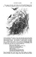 27 ページ