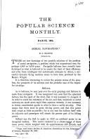 1904年3月