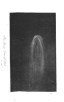 55 ページ