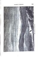 203 ページ