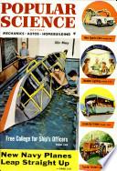 1954年5月
