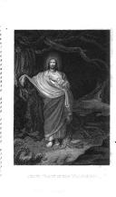 810 ページ