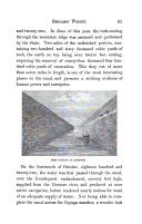 61 ページ