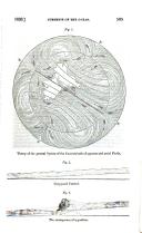 505 ページ