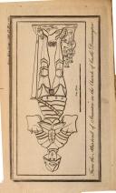 1155 ページ
