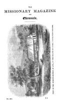 517 ページ