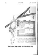 510 ページ