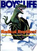1994年11月