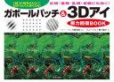 ガボールパッチ&3Dアイ視力回復BOOK 1回30秒見るだけで目がぐんぐん良くなる!